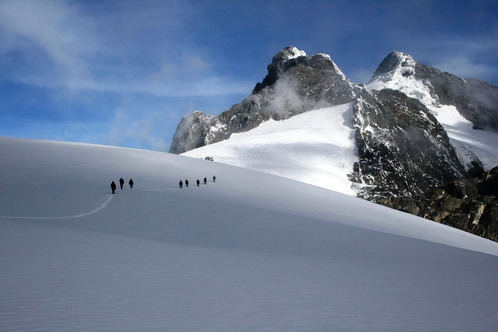 Facts about Moutain Rwenzori National Park – Uganda safari News